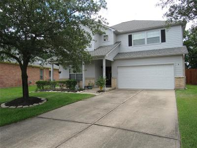 Tomball Single Family Home For Sale: 21902 Willow Shadows Drive