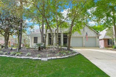 The Woodlands Single Family Home For Sale: 3 Bay Chapel Court