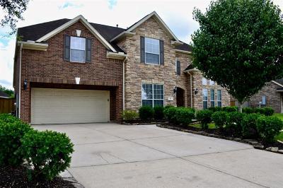 League City Single Family Home For Sale: 210 Grand Creek Drive