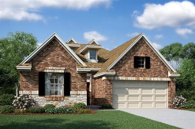 Missouri City Single Family Home For Sale: 3731 Venosa Court