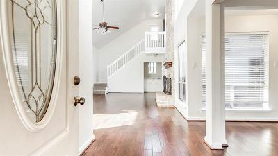 Houston Single Family Home For Sale: 1611 Cherry Ridge Drive