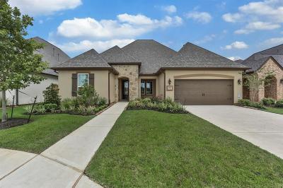 Missouri City Single Family Home For Sale: 10507 Lantana Pass