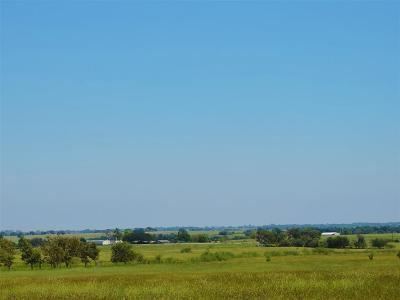 Schulenburg TX Farm & Ranch For Sale: $399,000