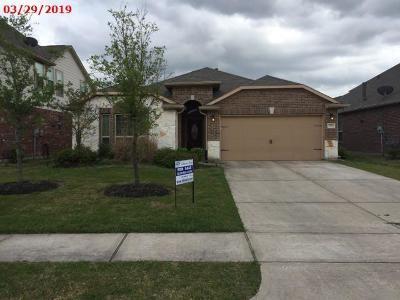 Single Family Home For Sale: 3790 Blaine Oaks Lane