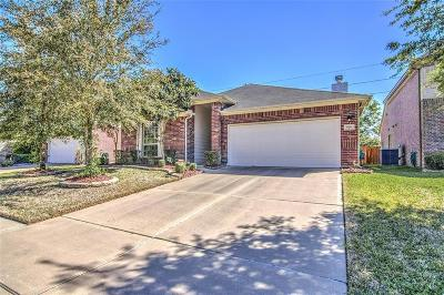 Pearland Single Family Home For Sale: 13110 Shallow Falls Lane