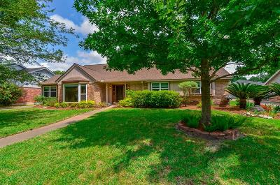 Houston Single Family Home For Sale: 9814 Vogue Lane