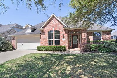 League City Single Family Home For Sale: 6121 Southwell Lane