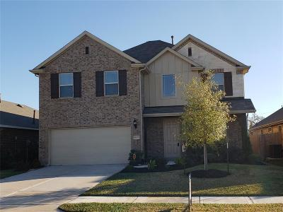 Houston Single Family Home For Sale: 16203 Sommerall Creek Lane