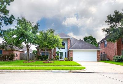 Pearland Single Family Home For Sale: 3903 Balmoral Lane