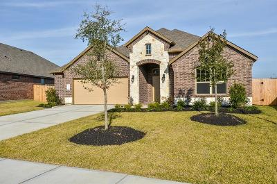 Katy Single Family Home For Sale: 3215 Emerald Valley Drive
