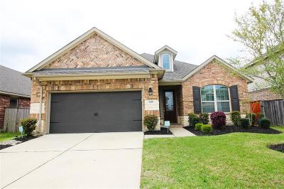 Pearland Single Family Home For Sale: 1416 Pebblestone Way