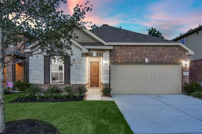 Conroe Single Family Home For Sale: 1127 Swinford Court