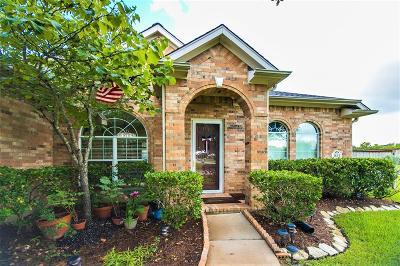 Katy Single Family Home For Sale: 3823 Jackson Bluff Drive