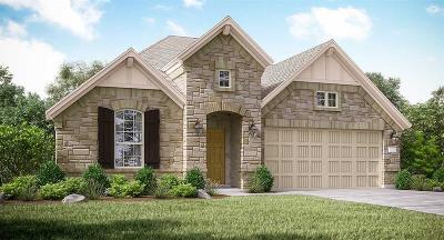 Conroe Single Family Home For Sale: 1648 Breezewood Drive