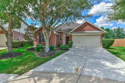 Pearland Single Family Home For Sale: 2902 Plum Lake Drive