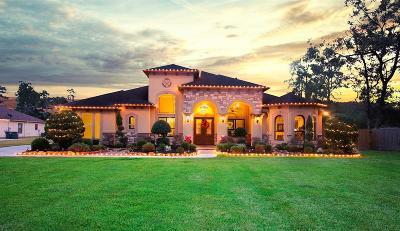 Porter Single Family Home For Sale: 23048 Volga Drive