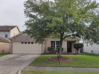 Sugar Land Single Family Home For Sale: 16118 S Dawn Marie Lane