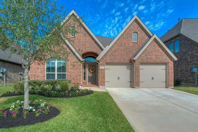 Shadow Creek Ranch Single Family Home For Sale: 13603 Castlebay Park Lane