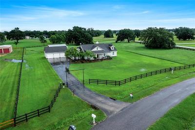 Rosharon Single Family Home For Sale: 2810 Rustic Wood Lane
