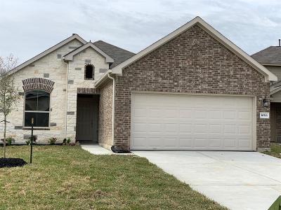Houston Single Family Home For Sale: 16518 Veneta Court