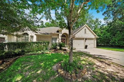 Conroe Single Family Home For Sale: 2515 Wynden Meadow Lane