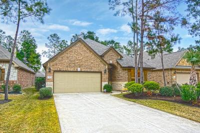 The Woodlands Single Family Home For Sale: 131 E Jagged Ridge Circle