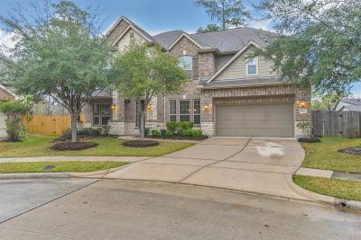 Houston Single Family Home For Sale: 13922 Polarstone Court