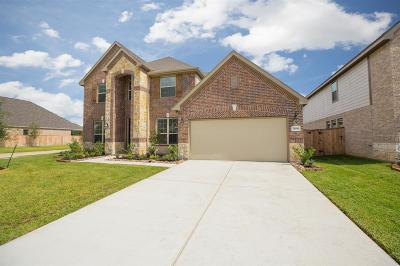 Tomball Single Family Home For Sale: 21606 Safrano Street