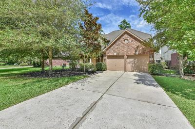 Conroe Single Family Home For Sale: 206 Fairwind Trail Drive