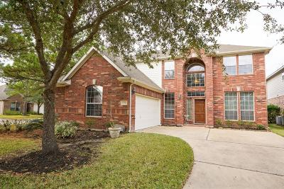 Houston Single Family Home For Sale: 10311 Lyndon Meadows Drive