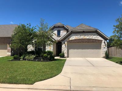 The Woodlands Single Family Home For Sale: 54 Pioneer Canyon Place