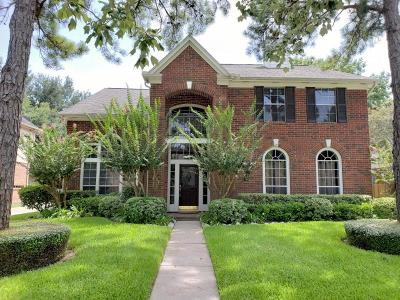 Katy Single Family Home For Sale: 20603 Spring Rose Drive