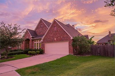 Pearland Single Family Home For Sale: 13613 Iron Landing Court