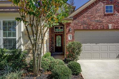 Katy Single Family Home For Sale: 9622 W Amber Bluff Lane