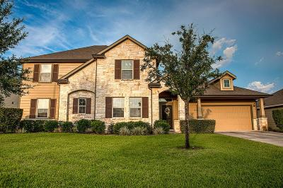 Tomball Single Family Home For Sale: 22406 Stonebridge Crossing Lane
