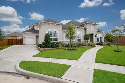 Katy Single Family Home For Sale: 26523 Crimson Bluff Lane