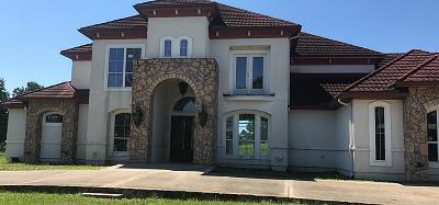 Houston Single Family Home For Sale: 7703 Heron Lakes Drive
