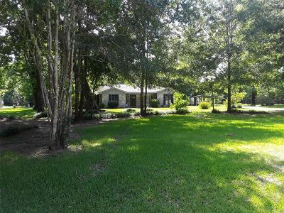New Caney Single Family Home For Sale: 17866 Magnolia Lane