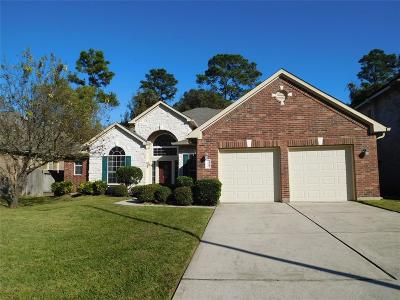 Houston Single Family Home For Sale: 13646 Mansfield Point Lane
