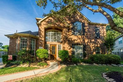 Sugar Land Single Family Home For Sale: 239 River Grove Road