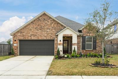 Pearland Single Family Home For Sale: 3622 Bosc Drive