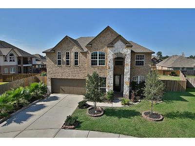 Tomball Single Family Home For Sale: 17711 Jacobs Ladder Court
