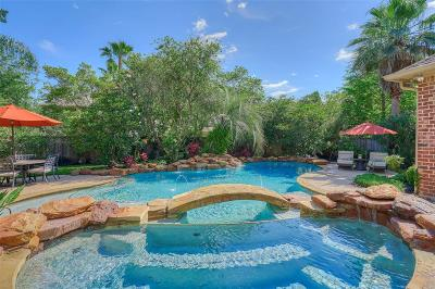 The Woodlands Single Family Home For Sale: 22 Midday Sun Place