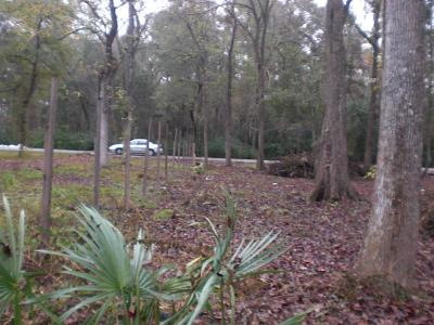 Humble Residential Lots & Land For Sale: 13719 Chalkstone Lane