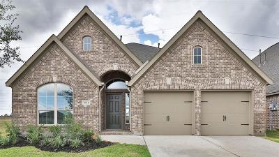Pearland Single Family Home For Sale: 3113 Primrose Canyon Lane