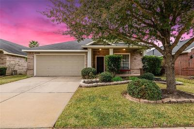 Katy Single Family Home For Sale: 25006 Mills Pass Court
