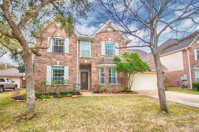 League City Single Family Home For Sale: 1249 Fawn Valley Drive