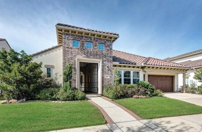 Sugar Land Single Family Home For Sale: 81 Quiet Way Lane