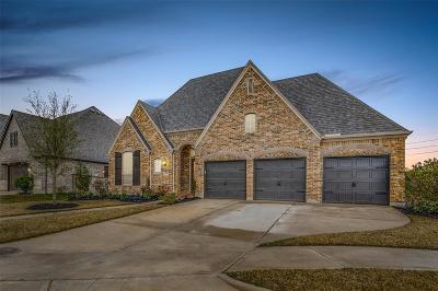 Richmond Single Family Home For Sale: 20806 Briar Vista Way