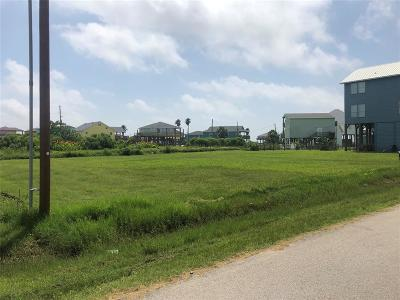 Galveston Residential Lots & Land For Sale: 902 Magnolia Lane